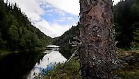 River Orkla, Rennebu, Norway<br /> Model name: -