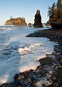 Sea stacks, surf, coastal forest at Ruby Beach, Olympic National Park, Washington, USA. Sunrise casts long shadows on the foamy surf and pebbled beach.