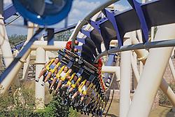 Tomolonis Family / Montu  Roller Coaster