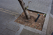 A detail of a leaning tree stump with its watering hose and dropped cigarette butts in a south London street, on 6th October 2016, in London, England.