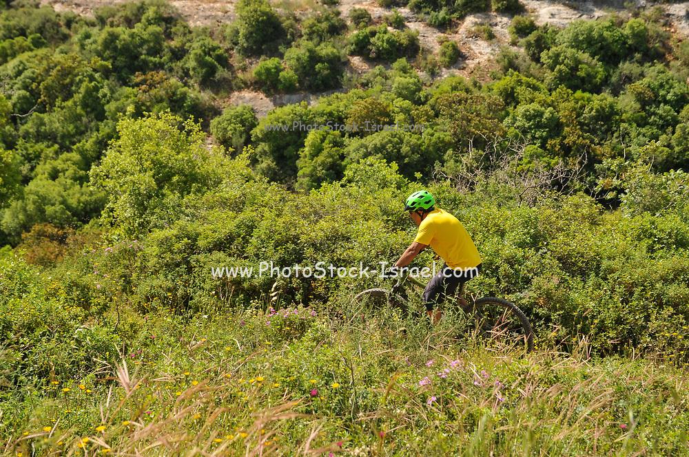Lone cyclist mountain biking ion the Carmel Mountain, Israel