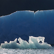 Icebergs along the Tracy Arm fjord in southeast Alaska.