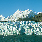 """The Glacier Bay Basin is a myriad combination of tidewater glaciers, snow-capped mountain ranges, ocean coastlines, deep fjords, and freshwater rivers and lakes that provide widely varying land and seascapes, and hosts a mosaic of plant communities, and a great variety of marine and terrestrial wildlife. It has many branches, inlets, lagoons, islands, and channels that hold prospects for scientific exploration and a visual treat for the visitor.<br /> Glacier Bay, the body of water, covers an area 1.375 square miles (3,560 km2) of glaciers and accounts for 27% of the park area. It was a large single glacier of solid ice until early 18th century. It started retreating and evolved over the centuries into the largest protected water area park in the world. It was formerly known as the Grand Pacific Glacier about 4,000 feet (1200 m) thick and about 20 miles (32 km) in width, which has since then, over the last more than 200 years retreated by 65 miles (105 kms) to the head of the bay at Tarr Inlet, and in this process left separate 20 other glaciers, including this one, in its trail.<br /> Glaciers are very dynamic entities and there are seven """"active"""" tidewater glaciers in Glacier bay, which are advancing into the sea and thus calve off large chunks of ice that fall into the sea with a thunderous noise, raising large waves."""