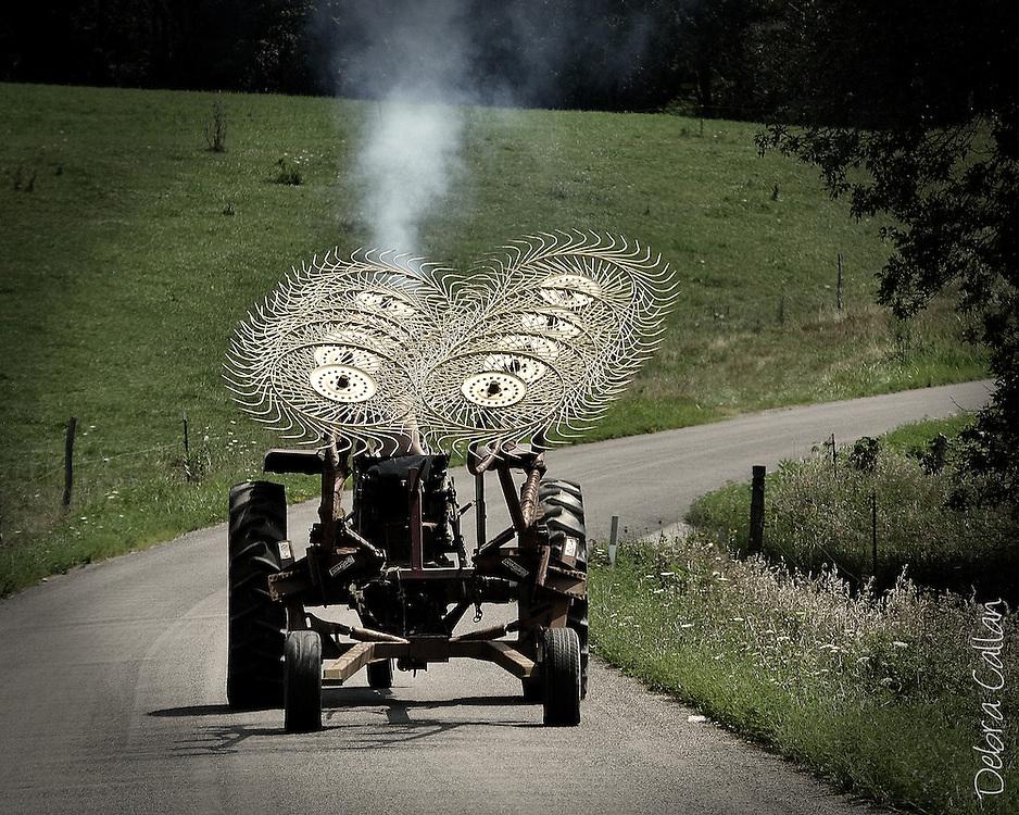 Wheel Rake Farm Tractor, Photography by Debra Callan
