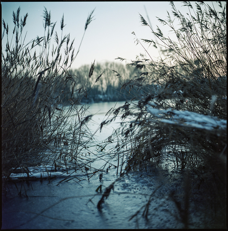 Frozen Lake, Wivenhoe, Colchester, 2009