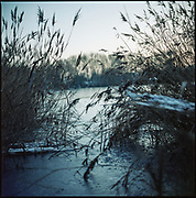 Frozen Lake, Wivenhoe, Colchester, 2009