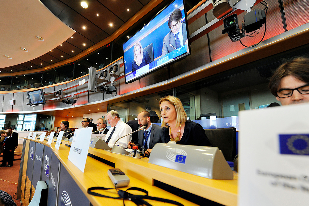 12 May 2017, 123rd Plenary Session of the European Committee of the Regions <br /> Belgium - Brussels - May 2017 <br /> <br /> MAUPERTUISMarie-Antoinette