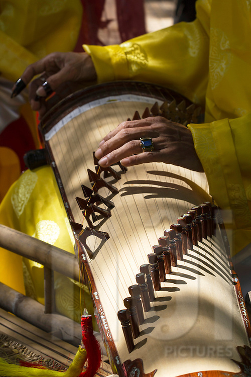 Hands of a musician are seen playing a traditional Vietnamese instrument, Tao Dan Park, Ho Chi Minh City, Vietnam, Southeast Asia