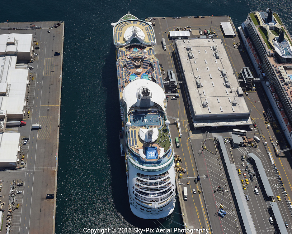 Cruise ships docked at Port of Seattle's Smith Cove Cruise Ship Terminal 91, at the north end of Elliott Bay.