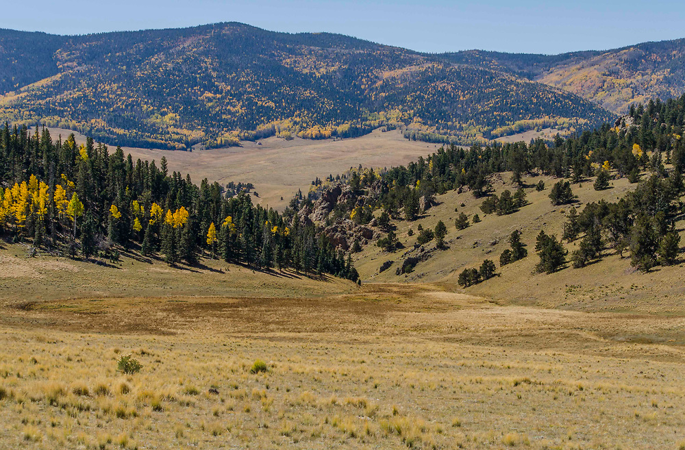 Valle Vidal Carson National Forest New Mexico