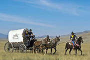 "A group of young juvenile (criminal)  offenders participate in an ""open prison"" rehabilitation programme designed to build self esteem, courage, purposeful lives, seen here on horse back  and wagon's crossing a Nevada landscape. They are known as ""Buffalo soldiers"" and use the same clothing as Gral Custer and his cavalry used in the American civil war. Most of  the offenders are black, USA. This programme runs by the name of Vision Quest's Wagon Train."