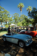 Austin-Healey 3000.<br />