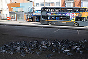 Local atmosphere due to Coronavirus lockdown is felt on a street by street level as streets remain deserted as a flock of feral pigeons feed under Hockley Flyover in Hockley as people observe the stay at home advice from the government on 7th April 2020 in Birmingham, England, United Kingdom. Coronavirus or Covid-19 is a new respiratory illness that has not previously been seen in humans. While much or Europe has been placed into lockdown, the UK government has announced more stringent rules as part of their long term strategy, and in particular social distancing.