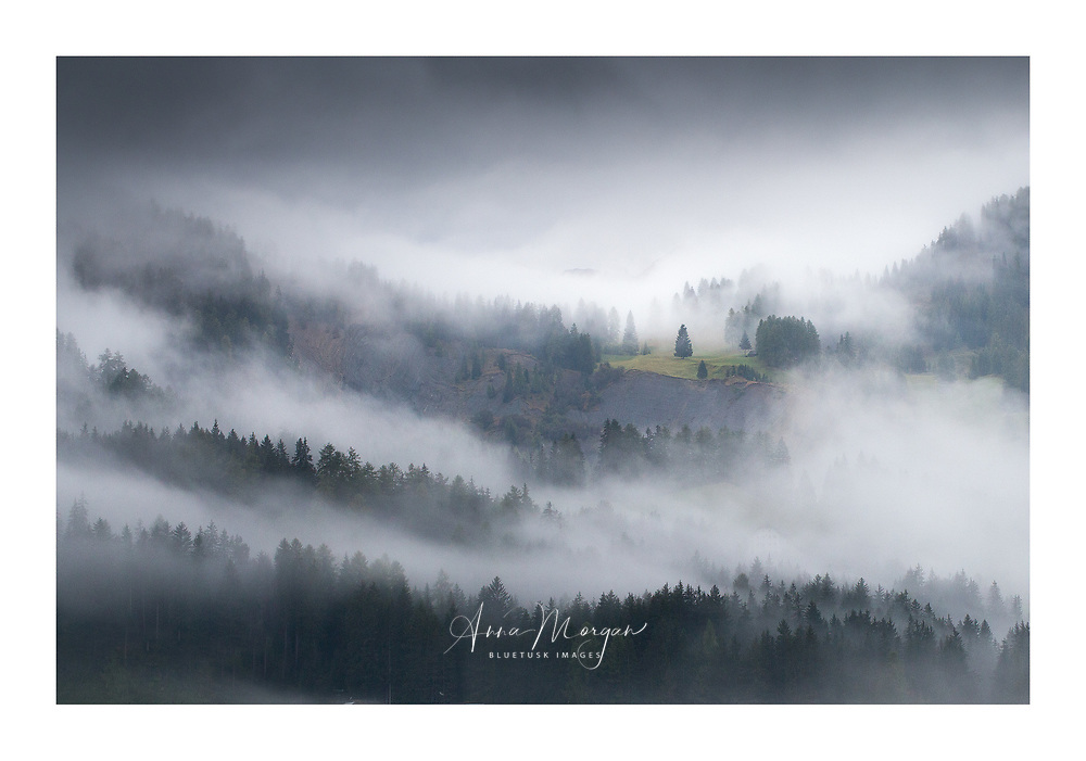 A tree and green meadow at the top of an escarpment are slowly revealed as the mist lifts