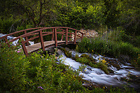 A bridge crosses over a cascading stream in Utah's Wasatch Mountains as the green bushes and trees of Summer surround you.