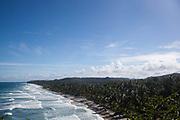 Palm fringed paradisical beach in the daytime, Itacare, Bahia, Brazil.