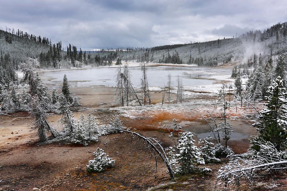 Nymph Lake, Yellowstone NP, Wyoming (Estados Unidos)