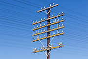 railway power and communications signalling cables on pole at Illabo, New South Wales, Australia <br />