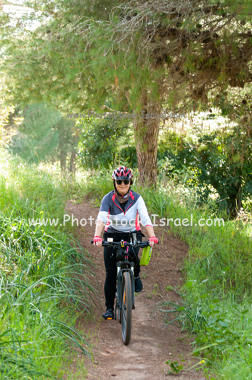 female cyclist cycling in nature on a single track path in a forest. Photographed in Israel in February