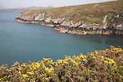 Coastal scenery St Davids Pembrokeshire national park Wales