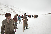 Two caravan crossing path over the plain named Mirzo Murad..Between Langar and Bozoi Gumbaz, the entrance to the Little Pamir Plateau...Trekking up the Wakhan frozen river, the only way up to reach the high altitude Little Pamir plateau, home of the Afghan Kyrgyz community.