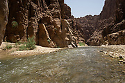Wadi Mujib, which is also known as the biblical Arnon Stream, is a river canyon in Jordan which enters the Dead Sea c 420 metres (1,380 ft) below sea level.