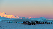 Evening at Georges Point, Rongé Island, Antarctica