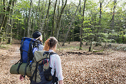 Rear view of young couple hiking with backpack in a forest, Bavaria, Germany