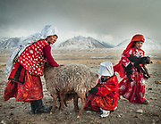 Girls and women bringing the lambs to their mum for feeding. Goat and sheep herd returning in the evening. At the Andemin camp.<br /> <br /> Trekking through the high altitude plateau of the Little Pamir mountains, where the Afghan Kyrgyz community live all year, on the borders of China, Tajikistan and Pakistan.