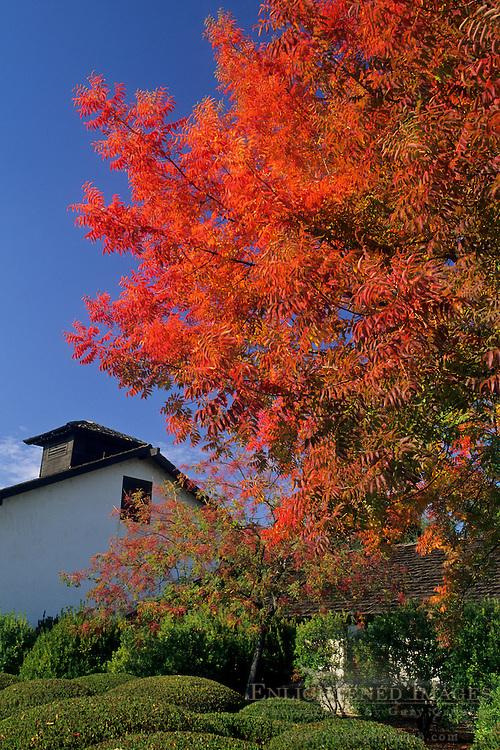Landmark Vineyards, Valley of the Moon, Sonoma County, California