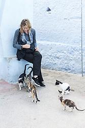 Cats surrounding tourist, Chefchaouen, Morocco