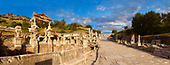 .<br /> <br /> If you prefer to buy from our ALAMY PHOTO LIBRARY  Collection visit : https://www.alamy.com/portfolio/paul-williams-funkystock/ephesus-celsus-library-turkey.html<br /> <br /> Visit our TURKEY PHOTO COLLECTIONS for more photos to download or buy as wall art prints https://funkystock.photoshelter.com/gallery-collection/3f-Pictures-of-Turkey-Turkey-Photos-Images-Fotos/C0000U.hJWkZxAbg