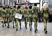 """07/10/2009 With their naked bodies painted to look like snakes and lizards, members of People for the Ethical Treatment of Animals (PETA) urge shoppers to scratch exotic-animal skins off their personal and holiday shopping lists. Their signs read, """"Don't Kill Us for Our Skins""""."""