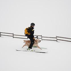 Ils sont pisteurs secouristes, CRS ou gendarmes et ont pour point commun de travailler avec des équipiers pas comme les autres: des chiens d'avalanche. On parle d'équipe cynophile ou de binôme, le maître chien et son chien. <br /> Grâce à son odorat hors du commun, le chien repère les effluves des personnes enfouies sous la neige, et permet leur secours, mais cette précieuse capacité doit être développée par un travail de chaque instant, en période de travail, d'entraînement, ou même de jeu.<br /> Janvier 2010 / Chamrousse / Isère(38) / FRANCE