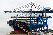 CMA CGM SAs Benjamin Franklin container ship docked at the Guangzhou Nansha Container Port in Guangzhou, China, on Monday, Feb. 1, 2016. The Benjamin Franklin is the largest container ship ever to have docked at a U.S. port.
