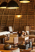 Interior, Odzala-Kokoua National Park.