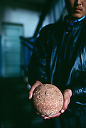 In Ulan Bator, Mongolia, the photographer is offered to buy a dinosaur egg illegally.