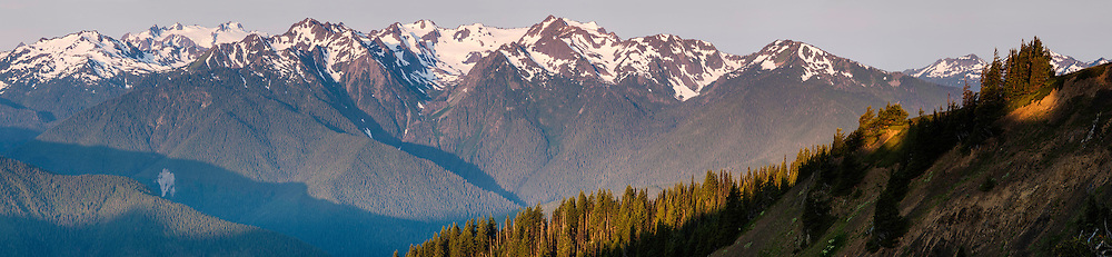 Olympic Mountains early in the morning as seen from the Hurricane Ridge road.
