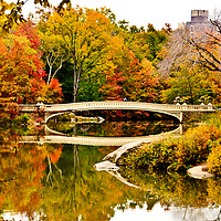 Walking in Central Park in the fall in Manhattan