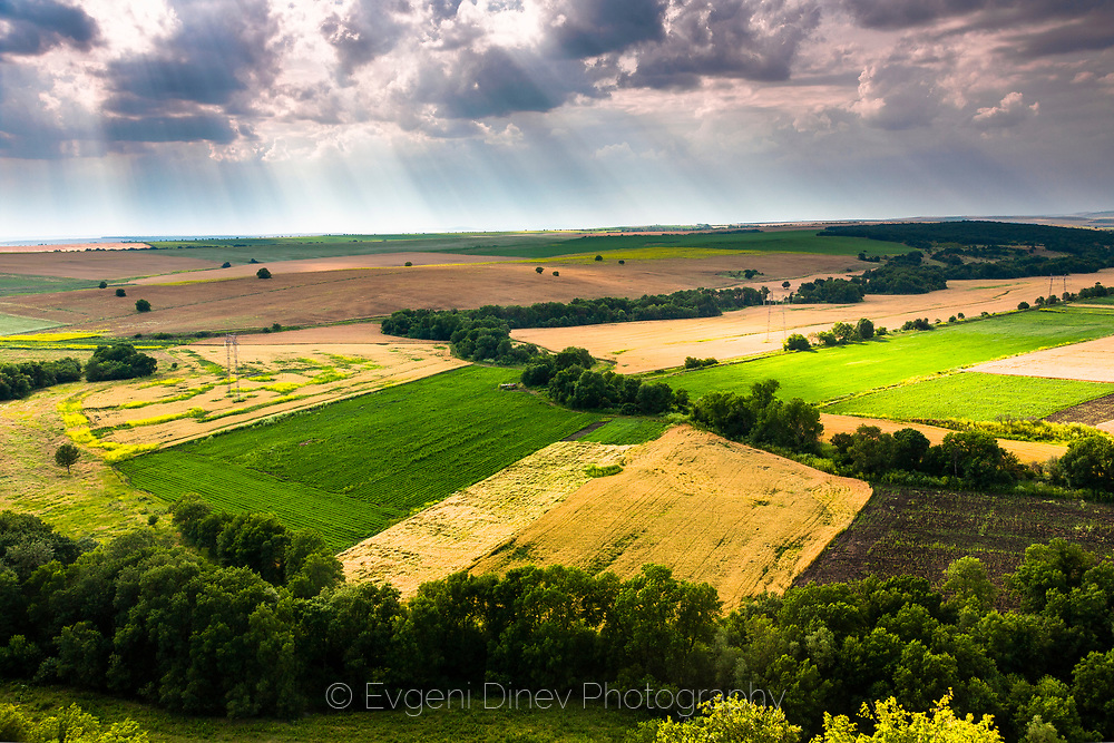 View from above to spring fields in a sunny day