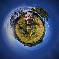 Wildflower Meadow -- Little Planet View. Image taken with a Garmin VIRB-360 camera (ISO 100, 1 mm, f/2, 1/1996 sec)