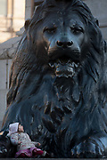 A young girl sits beneath one of the four enormous lion statues at the base of Nelsons column, on 17th January 2017, in Trafalgar Square, London England. The column dedicated to the heroic naval Admiral Lord Nelson is guarded by the four monumental bronze lions sculpted by Sir Edwin Landseer. In recent years there have been numerous falls from the lions resulting in serious injury including the necessity of the air ambulance.
