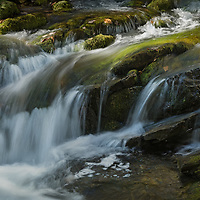 Portage Brook in Forillion National Park