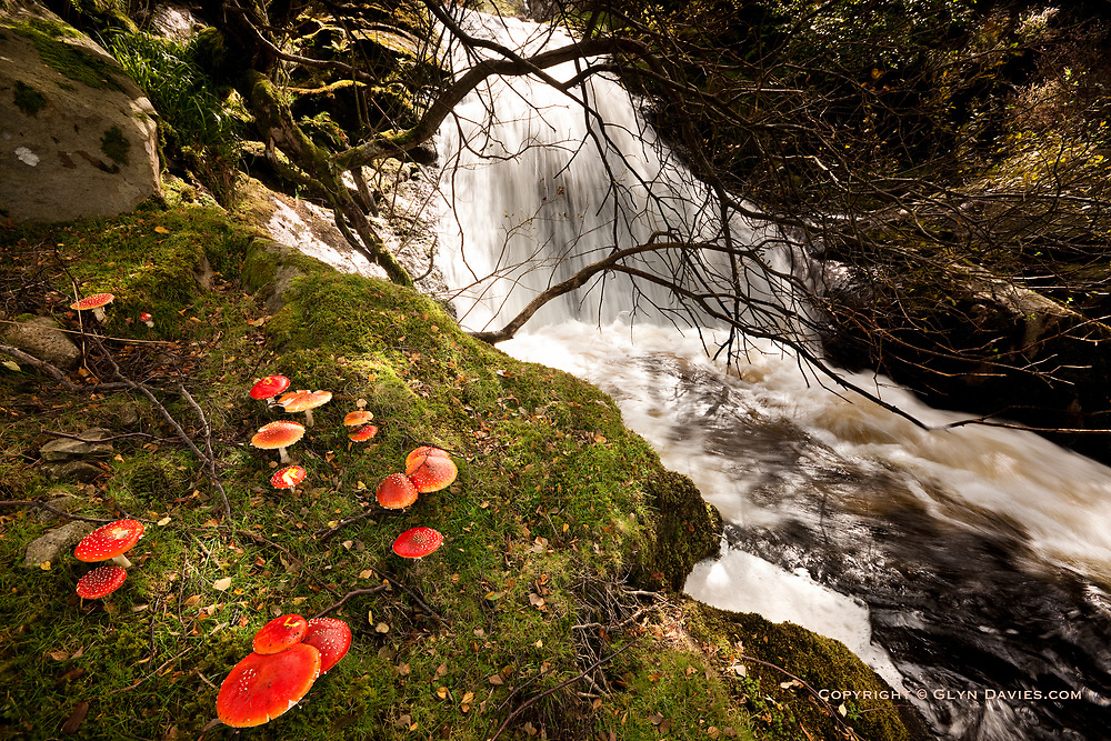 A short sunny start to a very long wet walk in this Northern tip of Snowdonia, starting at Rhaeadr Aber.