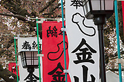 Flags and cherry blossom at the Kanamara matsuri or festival of the Steel phallus Kawasaki Daishi, Kawasaki, Kanagawa, Japan. Sunday, April 2nd 2017. The Kanamara Penis festival takes place on the first Sunday of April and celebrates the local legend of a penis eating demon who was defeated after being tricked into biting a steel phallus. The festival is popular with Japan's gay community and now uses its notoriety to raise money for HIV and AIDS charities. It is also wildly popular with foreign and Japanese.tourists.