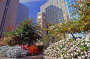 Pittsburgh, PA, Gardens, Downtown Hi-rises