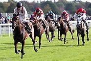 Horse Racing York Racecourse October Finale 111019