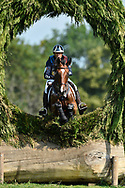 Cedric LYARD (FRA) riding Unum de'Or during the World Equestrian Festival, CHIO of Aachen 2018, on July 13th to 22th, 2018 at Aachen - Aix la Chapelle, Germany - Photo Christophe Bricot / ProSportsImages / DPPI