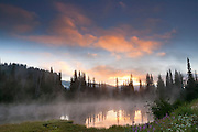 Steam fog rises off one of the Reflection Lakes in Mount Rainier National Park as the still waters reflect a dramatic late summer sunrise. Steam fog, also known as evaporation fog, occurs when the air above is colder than the water in a lake or other body of water. Moist air rises from the water and is rapidly cooled to its saturation point, producing fog..