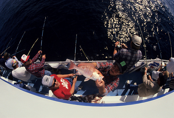 Stock photo of an aerial view of a man holding up a fish caught from the side of his group's boat